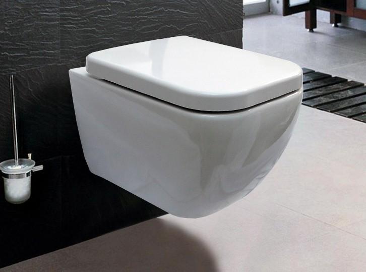 WC Deckel Duroplast WC Sitz Ersatzdeckel für WC CH101 und 101R
